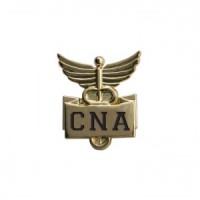 Lapel Pin-CNA-Gold - 94535